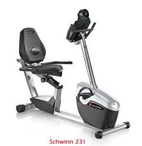 Schwinn-231